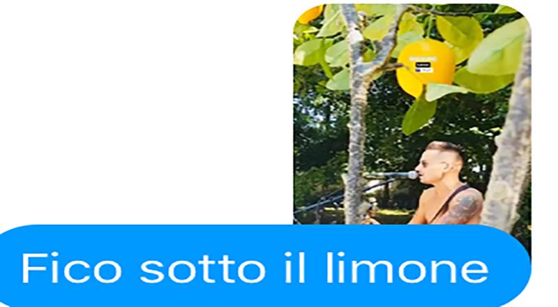 Ah … che Finestra sul Mondo, tipicamente estiva e mediterranea è un fico che suona e canta sotto il limone, no?