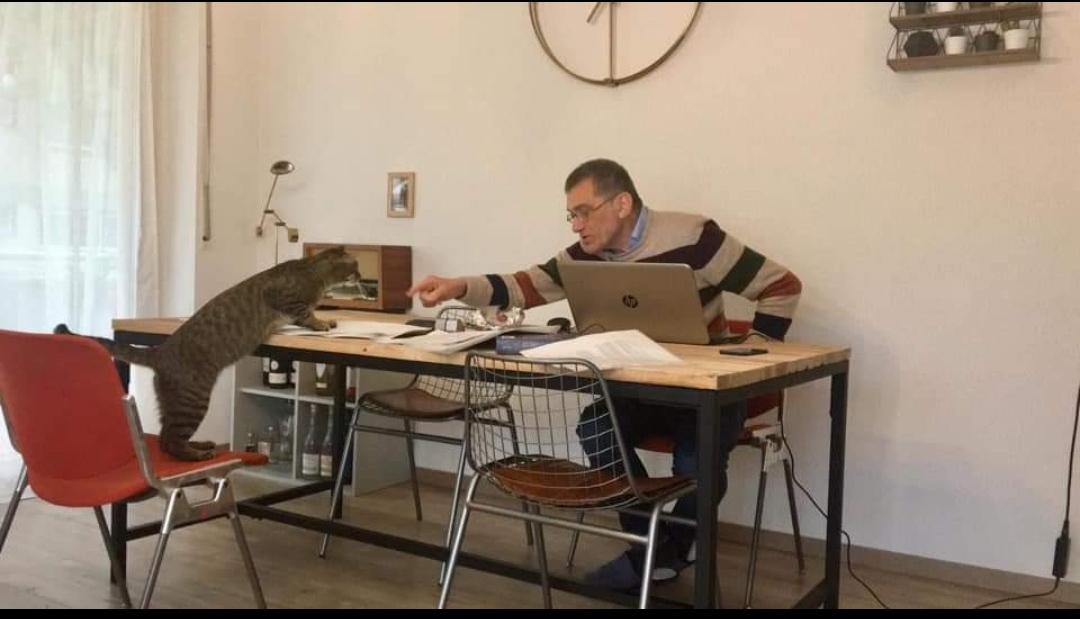 Clamoroso a Francoforte, via Cremona: pure il Blogger Flaminio Cozzaglio si schiera in difesa di Stefania Bonaldi. Ed è da anni che il sistema giudiziario va rivisto in Italia