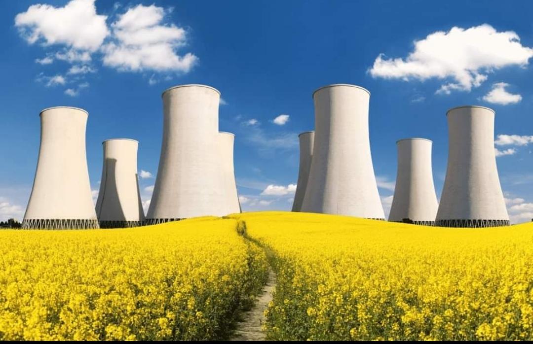 """Il vicesindaco di Offanengo Daniel Bressan: """"La sfida è intavolare un dibattito costruttivo sulle energie che verranno"""""""