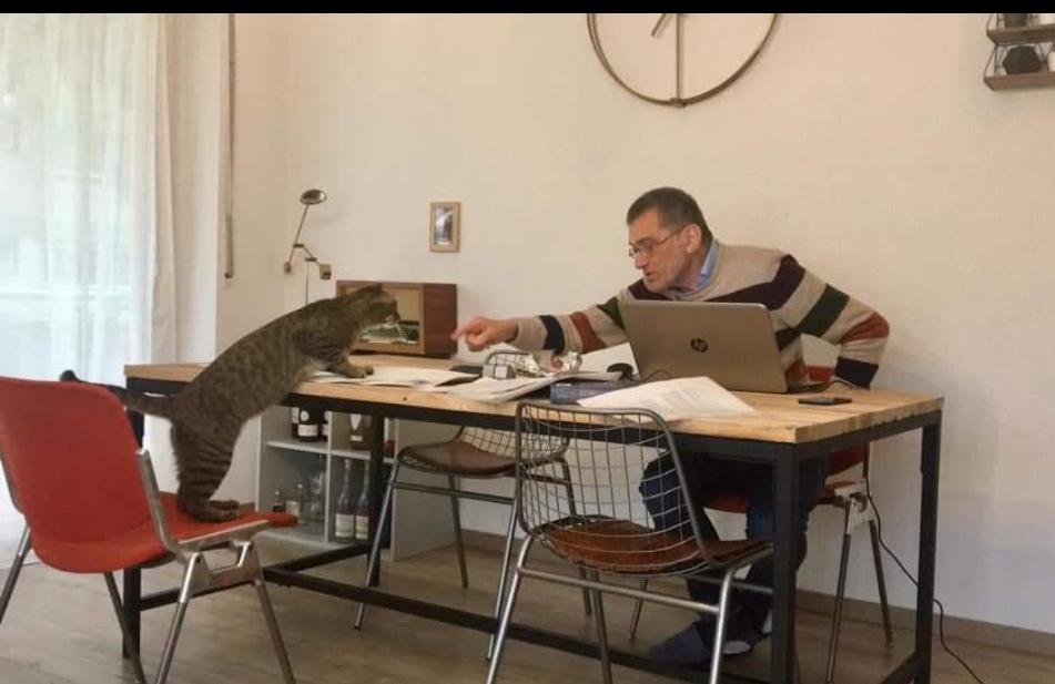Dal suo buon ritiro germanico di Francoforte, il Blogger Flaminio Cozzaglio omaggia il Miele cremasco più buono d'Italia ripostando la Coldiretti