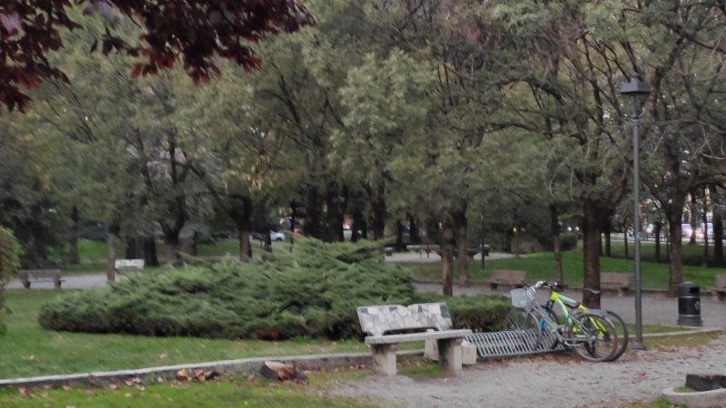 Ok non serve l'esercito e non siamo nel Bronx, ma qualche problemino coi parchi Crema ce l'ha, no?